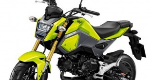 Nouveau Honda MSX 125 : léger liftiing pour 2016