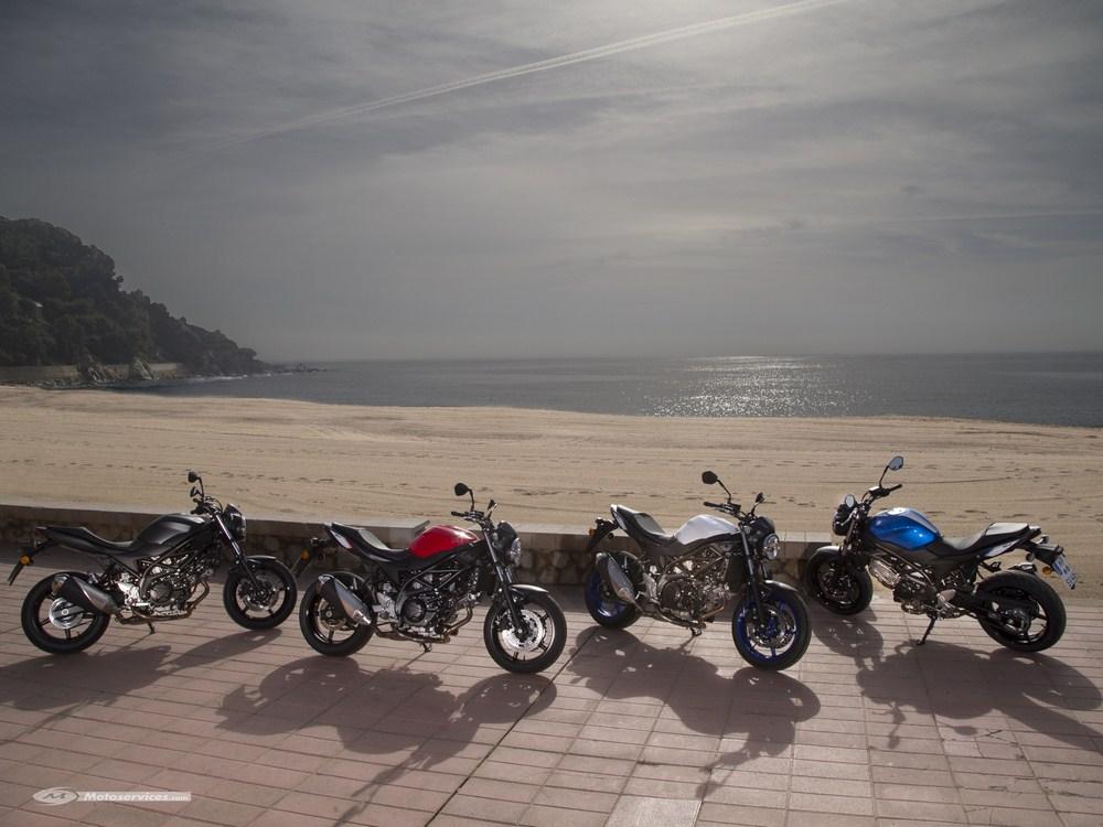 Nouvelle Suzuki SV 650 2016 : tarif et dispo