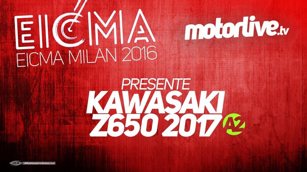 VIDEO   Kawasaki Z650 2017