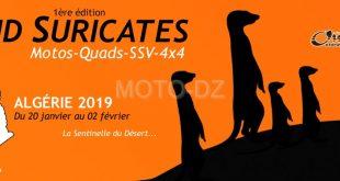 Rallye : Raid Suricates du 20 janvier au 02 février 2019 - Algérie