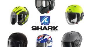 SHARK Algérie : arrivage de la collection 2020, détails & tarifs ...