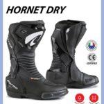 FORMA Algérie : La gamme 2020, détails et ses tarifs avec Lion Moto Riders SARL